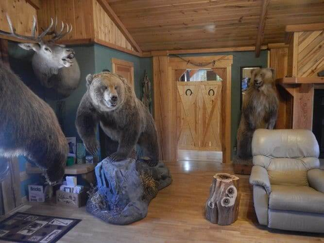 living room bears, they don't bite